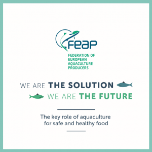 We are THE SOLUTION - We are THE FUTURE