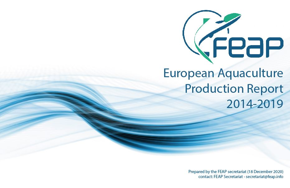 FEAP production report Dec 2020